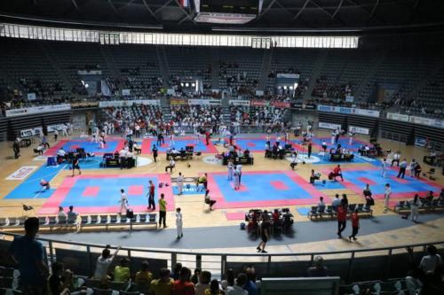 taekwondo-ph-(4)