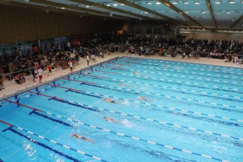 zatvoreno-bazensko-plivalište- (1)